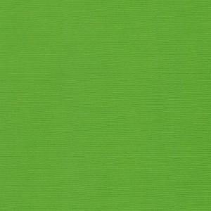 Текстурированный кардсток, цвет «Зеленый Травяной», 30,5х30,5 см., 216 гр./кв.м., 1 лист.