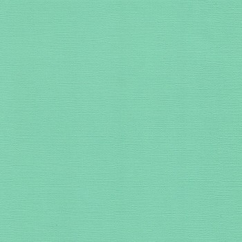 Текстурированный кардсток, цвет «Свежая Мята», 30,5х30,5 см., 216 гр./кв.м., 1 лист.